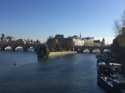 Ile de la cite view - Private walking tour in Paris - yourtourinparis.com